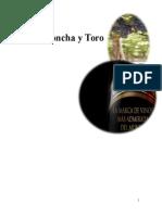 Planificación de Auditoria Viña Concha_&_Toro