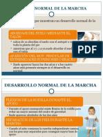 Desarrollo Normal y Patologico de La Marcha