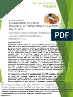 Plan de Clase No. 2 Webquest-proteínas