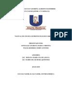 Manual de Protocolos de Fabricación