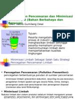 2010 Pollution Prevention Minimization