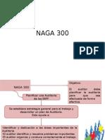 Naga 300