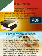 Tanda Homan