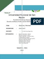 o.f.i.c.i.a.l. Informe Duodeno Páncreas Lml 1