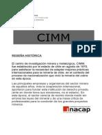 CIMM[1]