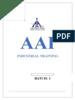 AAI.final.report