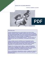 AQUELLOS FLECHAS NAVALES.pdf