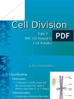 BSC102P 4 Cell Divisions