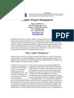 Article_AdaptativeProjectManagement.pdf