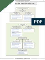 Behavioral Finance Summary Flow Chart
