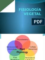 1. FISIOLOGÍA VEGETAL liz.pptx