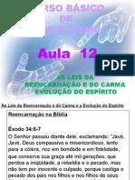 ( Espiritismo) - C B - Aula 12 – As Leis Da Reencarnacao E Do Carma # 03.pptx