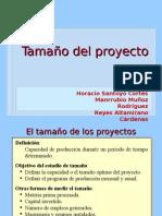 (1)Proyectos Tamaño
