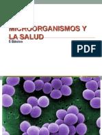 Microorganismos y Salud
