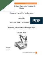 PH METRO.docx