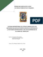 Tesis de Maiz Morado 04DIC ULTIMO (1)