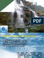 Usos Del Agua- Consumo Humano