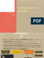 comunicacincelular-111017151500-phpapp01.pptx