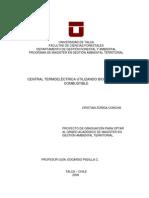 Tesis -Generacion Termoelectrica Biomasa-chile