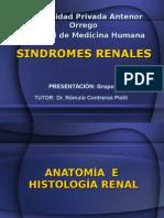 11alteraciones-renales3128