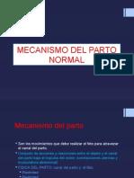 Mecanismo Del Parto Normal
