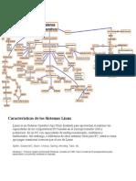 Características de Los Sistemas Linux