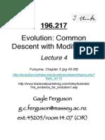L4 Common Descent 2015