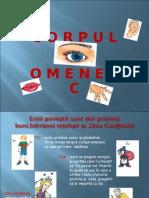 povestea_corpului_omenesc