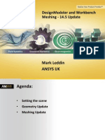 Track 1 1200 ANSYS_14.5_preprocessing