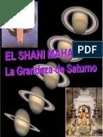 SHANI_2014.pdf