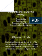 What Influences Enzyme Activity