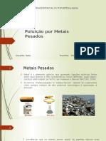 Poluição Por Metais