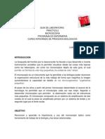 Practica+2+Microscopia-2014