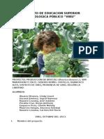 148175153-PROYECTO-BROCOLI.docx