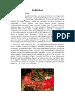 LOS XINCAS.docx