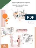 Joint Venture Mercadotecnia