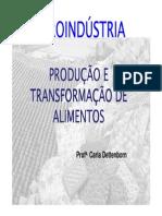 produçao e transformação de alimentos.pdf