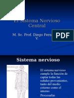 Neuronas, Sinapsis y Potencial de Acción