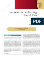 Small Animal Clinical Nutrition