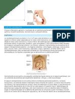 Peritonitis PAE