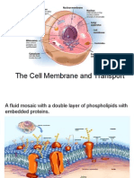 ch 05 cell membrane and transport