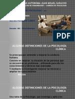 Tema 1- Rol Del Psicologo Clinico