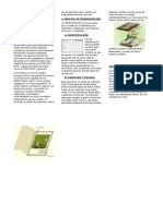 herborizacion.docx