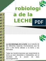 EXPOSICION MICROBIOLOGIA DE LA LECHE