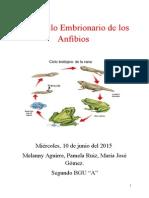 Desarrollo Embrionario de Los Anfibios
