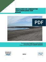 Biorremediacion de Ambientes Costeros