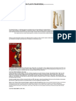 História Da Flauta Transversal