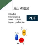 ASAM NUKLEAT PROTEIN TRANSKRIPSI REPLIKASI.pdf