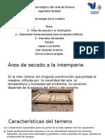 areas de secado de la madera a la intemperie.pptx