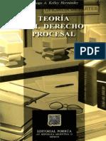 Teoria Del Derecho Procesal